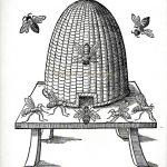 Convegno – Melissa -Il dono eterno delle api operose – Angera